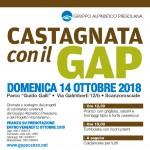 gap_castagnata-autunno-2018_locandina-330x488_banner-sito-gap
