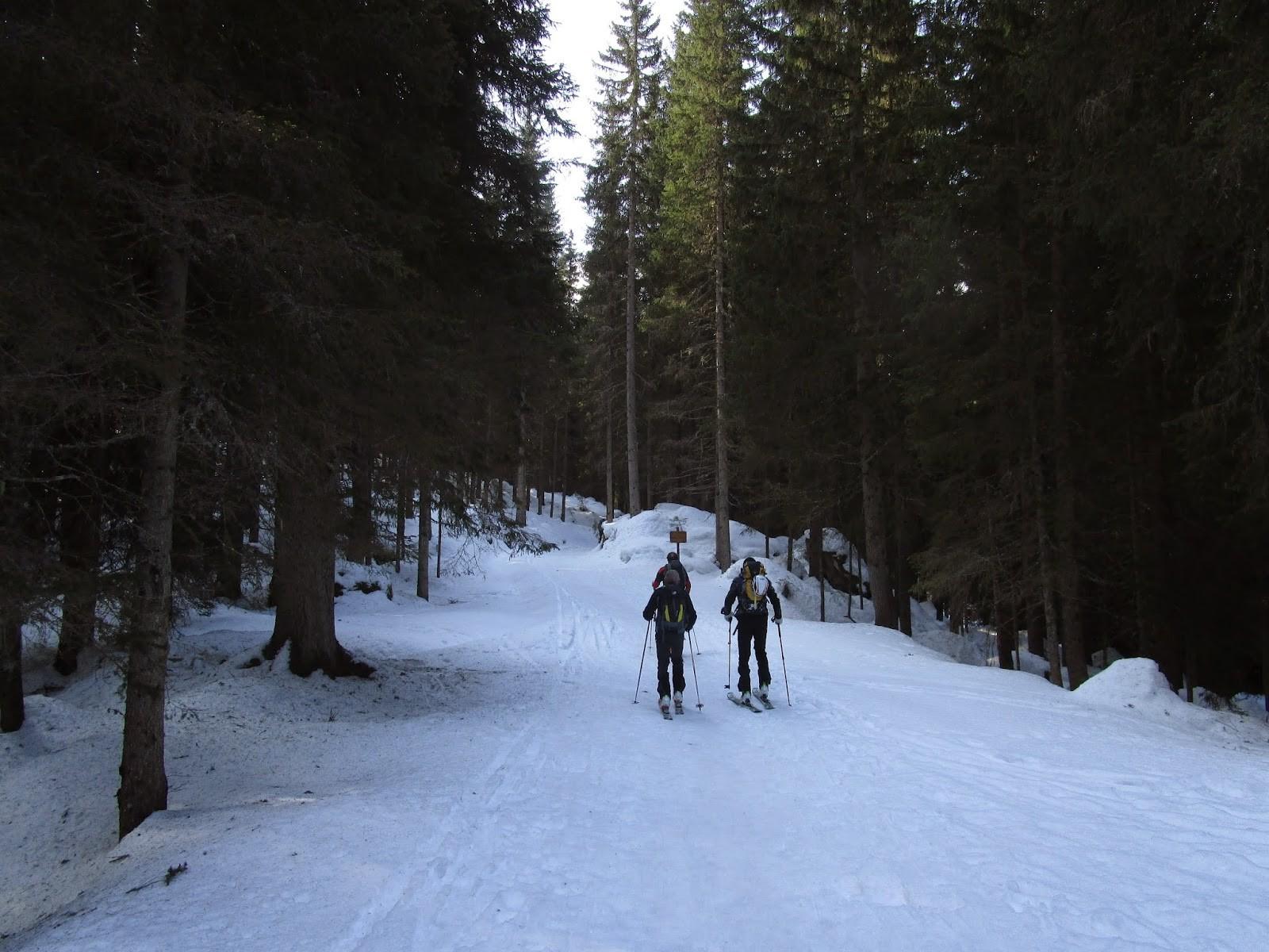 Piccolo Colbricon – 2511 m
