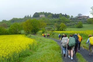 Trekking di Primavera