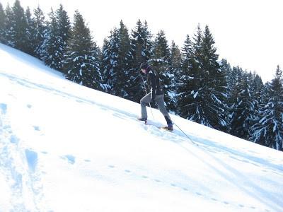 non proprio sci alpinismo: SCI ESCURSIONISMO al monte Alto