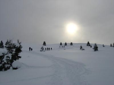 Un angolo di Norvegia sul Monte Pora..