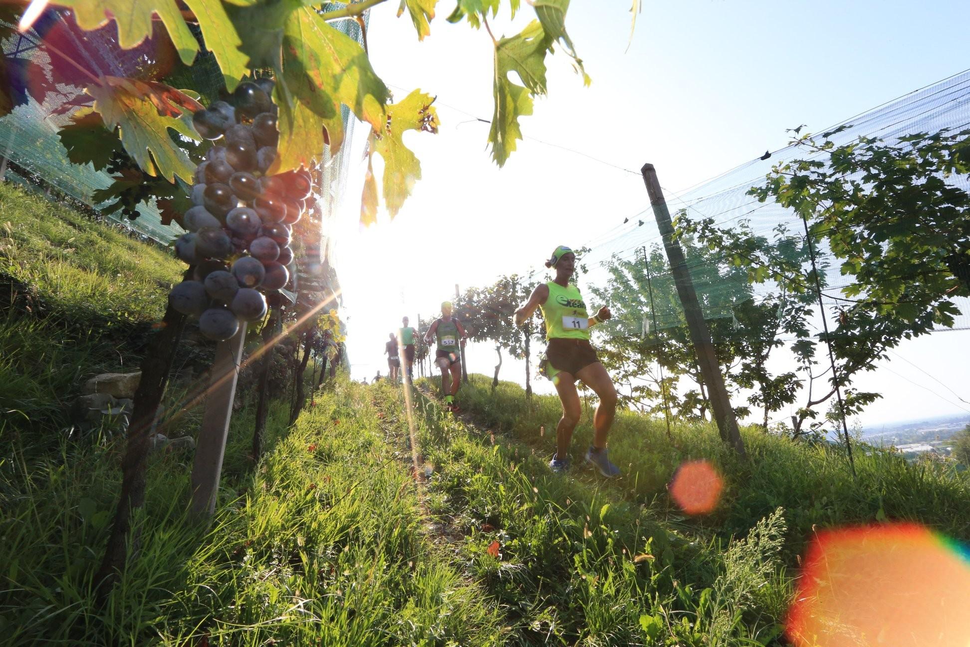 Apertura Iscrizioni Moscato di Scanzo Trail 2021