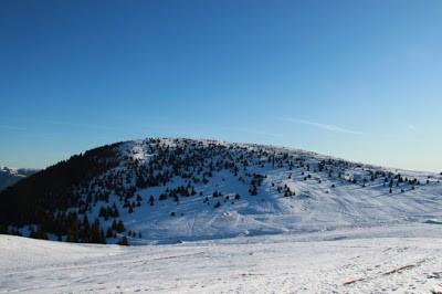 Alla ricerca della neve perduta